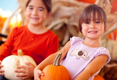 Fall Festivals in Ontario | Logel's Auto Parts Kitchener Waterloo