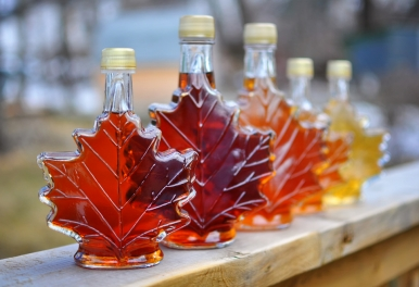 Maple syrup festivals in Ontario in 2017