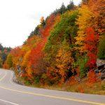 Best Road Trip Destinations in Ontario
