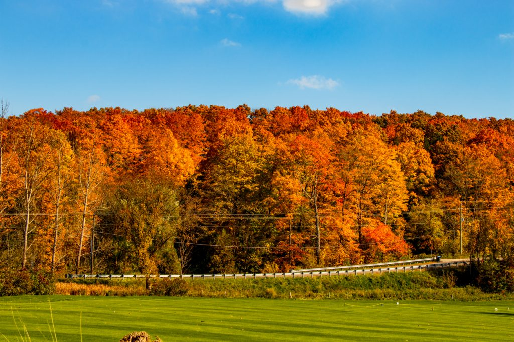 Caledon, Ontario in the fall
